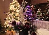 vianočné stromčeky vyzdobené osvetlené