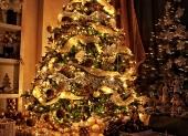 najkrajsi vianocny stromcek