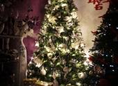 ziariaci vianocny stromcek