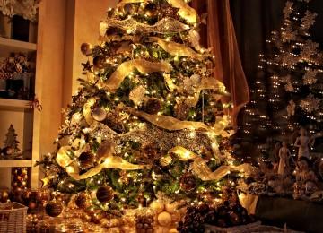vysvietený vianočný stromček