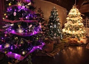 krásny vianočný stromček