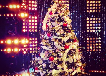 vianočný stromček v štúdiu