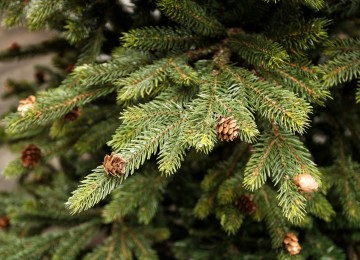 umelcy vianocny stromcek