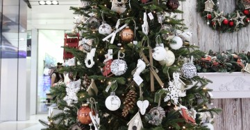 naturálny vianočný stromček